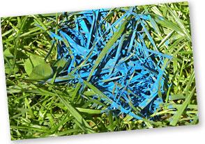 Grass_bemalt